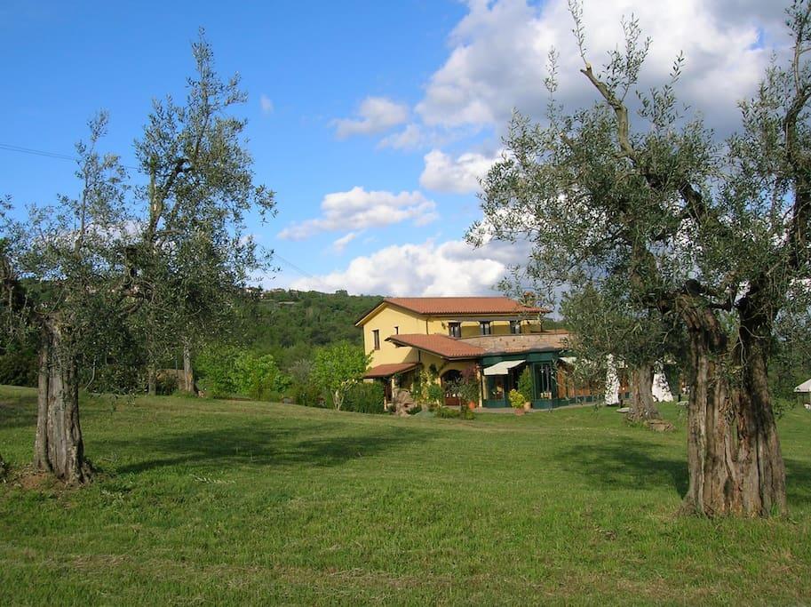 Whole farmhouse on Trasimeno Lake