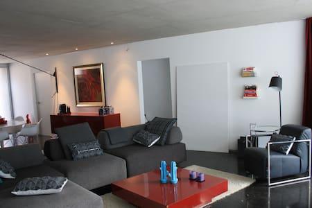 New design duplex with garden.  - Casa