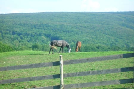 See horses grazing from your window - Haus