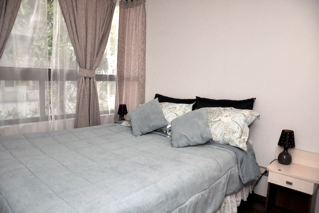 Lovely 2 Bedrooms apartment, Stgo