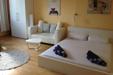 1 Room Apartment in Schoeneberg