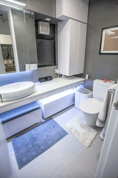 Amazing designer bathroom