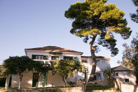 Villa eleni familly house - ΧΩΡΙΟ