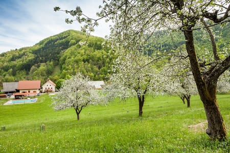Farmstay Zelinc with swimming pool - Cerkno - Bed & Breakfast