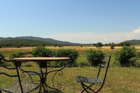 Farm in Maremma Park 4 km from the sea of Talamone - Appartement