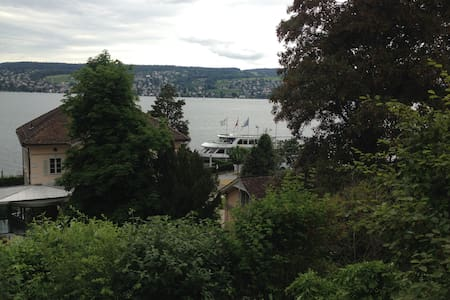 Spacious apartment with great Zürich lake views - Apartment