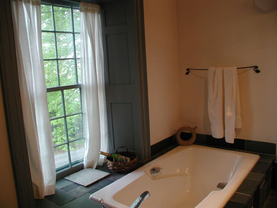 Master bedroom steeping tub.