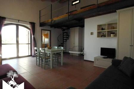 FORCELLE AL SOLE - green farmhouse - Roccantica - Apartment