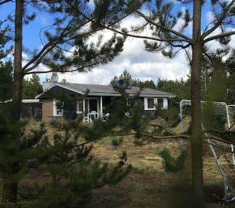 Sommerhus i Tranum klitplantage. - Brovst - Sommerhus/hytte