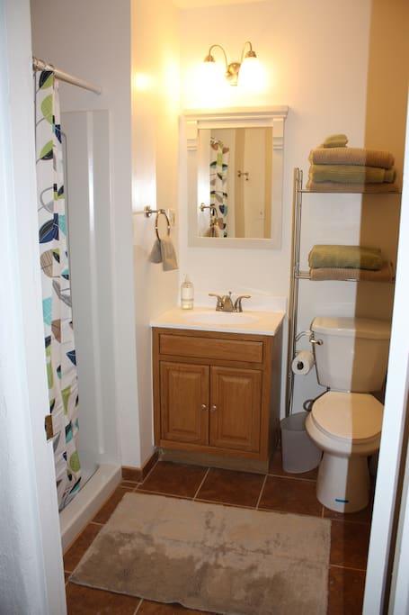 Newly remodeled hall bathroom