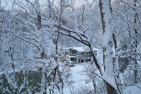 전원주택 및별장형태로 백곡 저수지가 내려다 보이고 좌우가 산임.전체 또는 1,2층 분리사용 - Jincheon