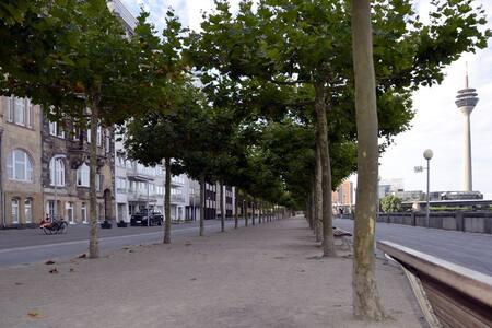 Picturesque Flat: Old Town / Rhein