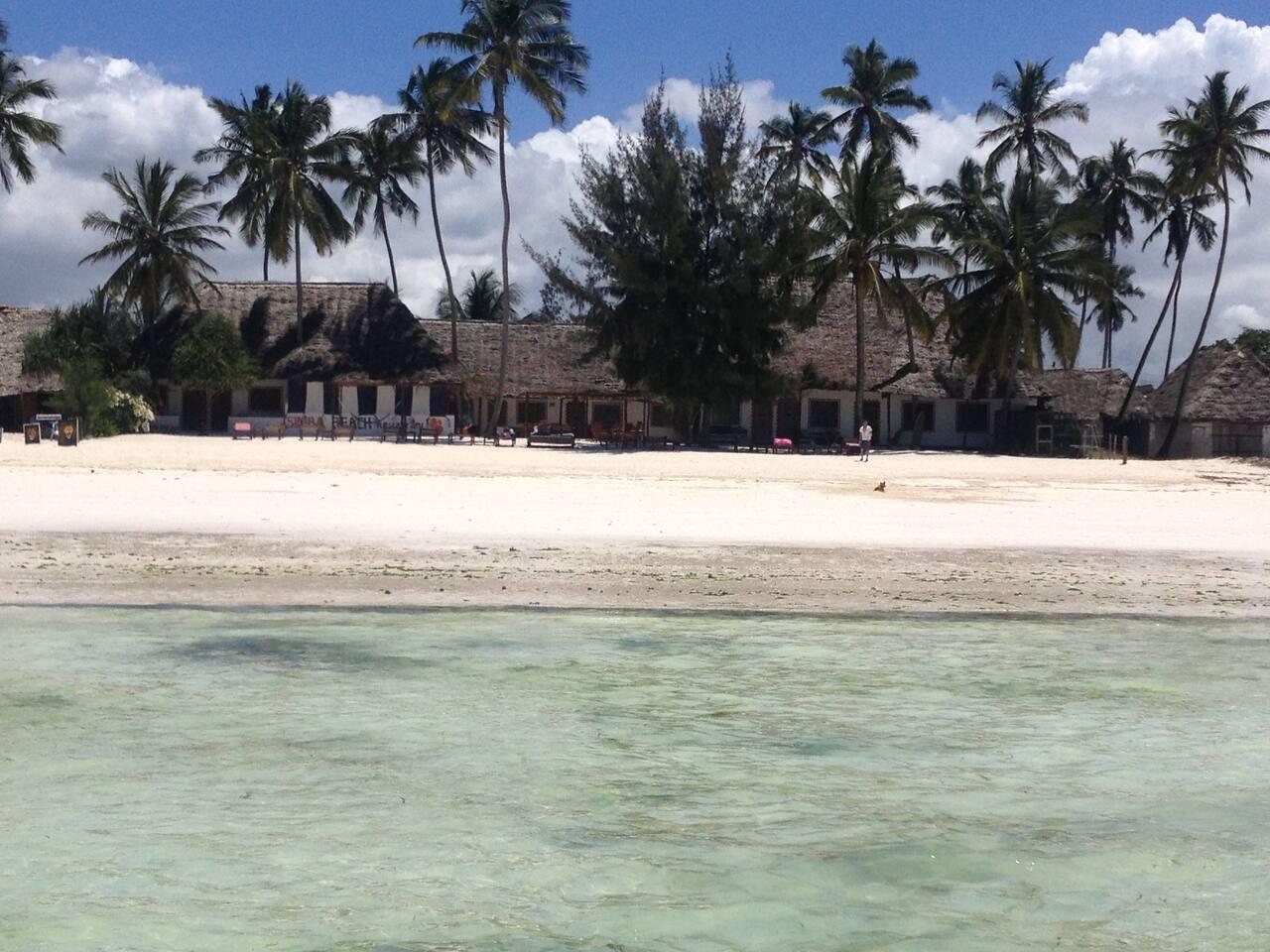 Simba Beach Zanzibar!!