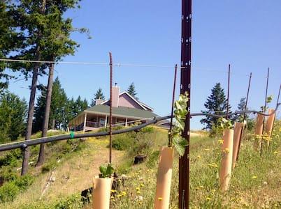 Terragena Vineyard - Retreat near the Redwoods - Myers Flat