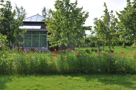 Glass House Lelystad (Glazen Huis) - Egyéb