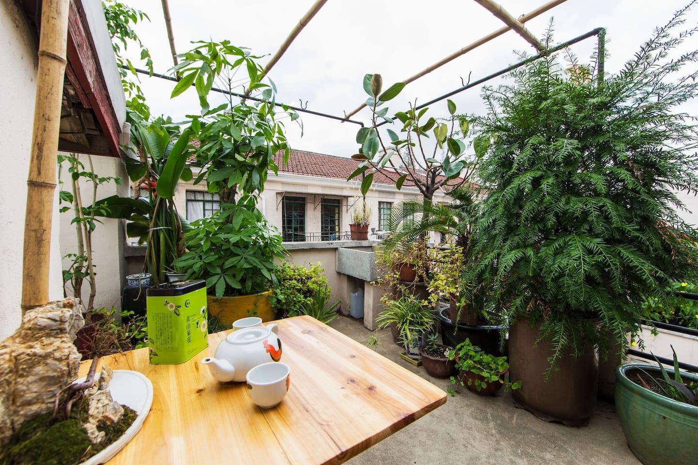 the terrace that is like a mini garden