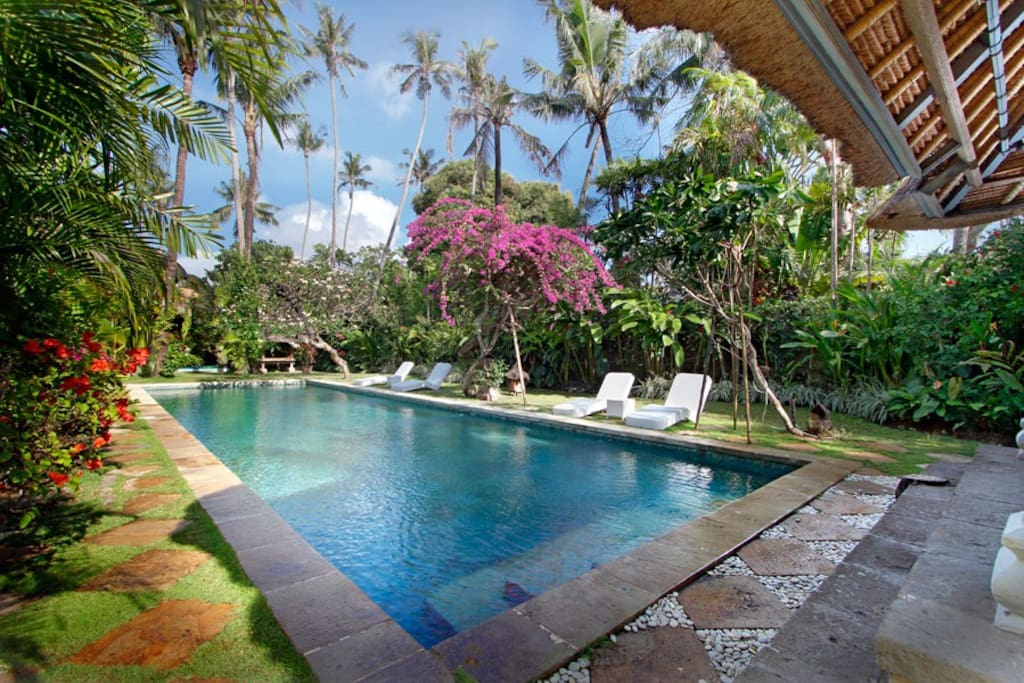 Villa Hibiscus has lovely 17-meters swimming pool with shallow zone for kids.