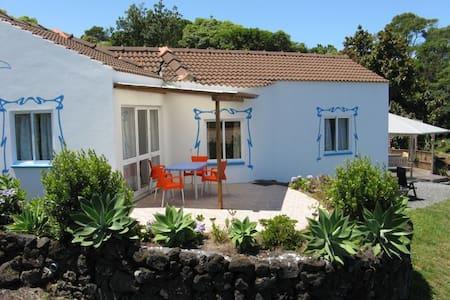 Ferienhaus Casa Maria Pico Azoren - Pico - Hus