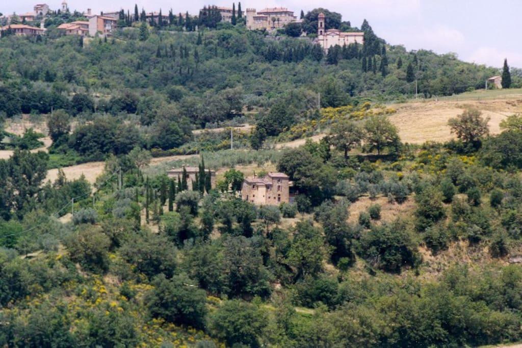 farm Capanne di sopra and Montefollonico