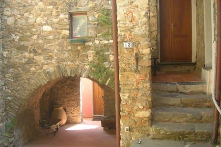 cosy rustic house Sarzana - Carignano - Apartment
