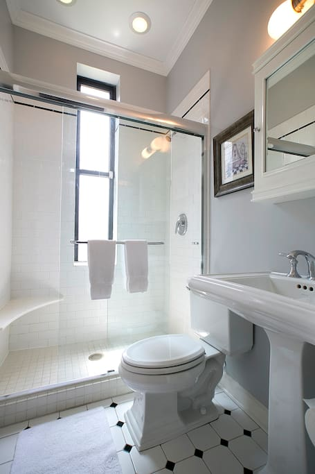 Bucktown Apartment private bath with large shower