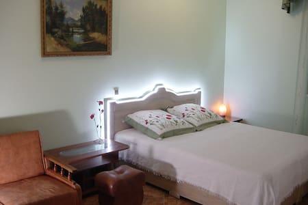 Комнаты в гостинице семейного типа - Truskavets - Dům