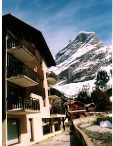 au pied des pistes en savoie classé - Pralognan-la-Vanoise