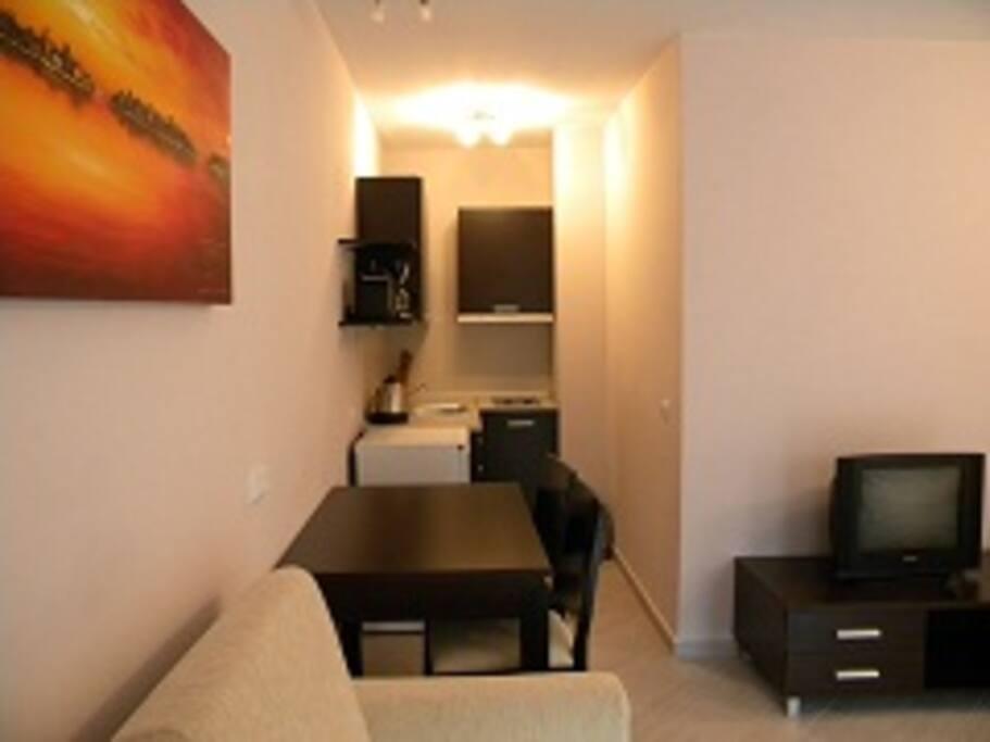 Amazing Bansko studio apartment!