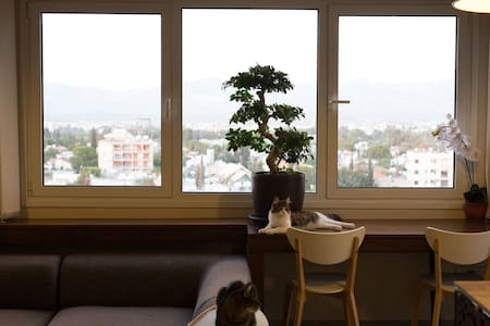 A Penthouse with Cats and a View, Nicosia Centre. - Pis
