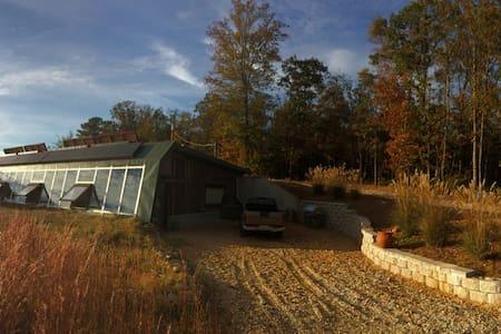Northeast Georgia Earthship - Royston - Dům