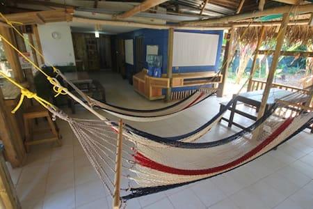 Drakebay Backpackers private cabin - Kisház