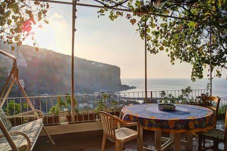 Villa Iole - Sea holidays - Villa