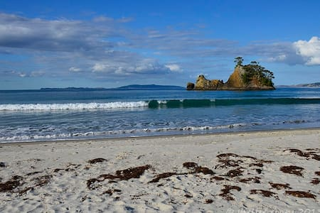 Relax at the beautiful Whangapoua Beach - Cabin