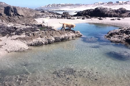 Isepho. Casual coastal time out. - Yzerfontein - House