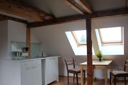 Schlafen unterm Dach - Studio mit Küchenzeile - Appartement