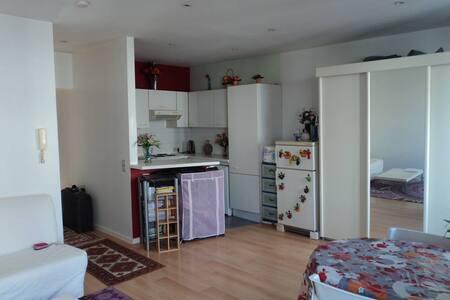 Belle Appartement 55 m² (2 pièces, Location d'été) - Lakás