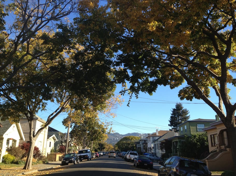 Great residential area smack dab in the middle of many urban amenities