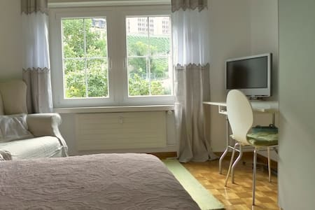 Old town, 1 room with private bath - Chur - Appartement