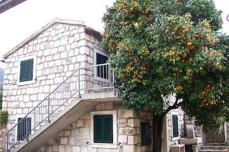 Modern apartment in a stone house 2 - Viganj - Huoneisto