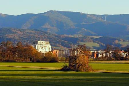 Ferienwohnung am Naturschutzgebiet - Freiburg - Lejlighed