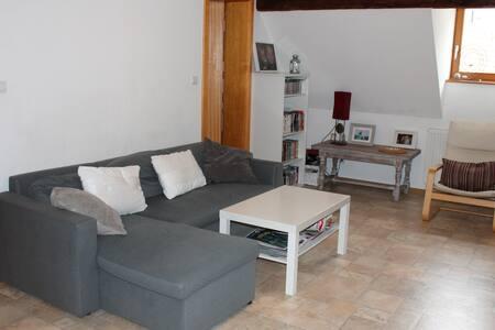 Charme et espace  10' de Strasbourg - Apartment
