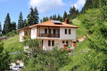 Eco House Family Hotel - Chepelare - Ev