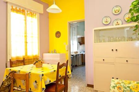Bright spacious apartment - House