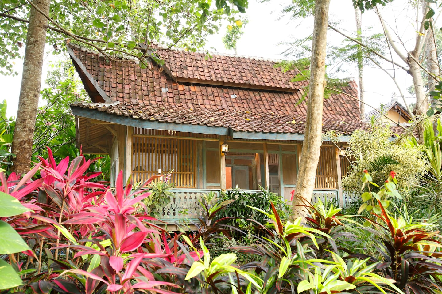 Welcome to your Guesthouse!  An antique teak house from Sulawesi