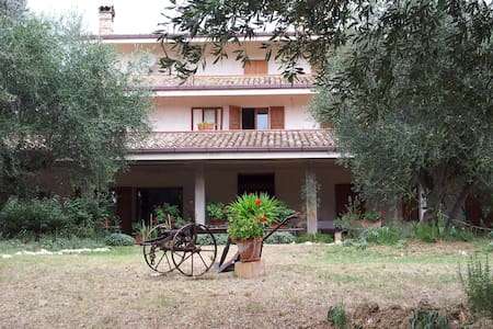B&B Agricola Le Grazie - Bed & Breakfast