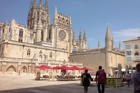 Tocando la catedral de Burgos - Burgos