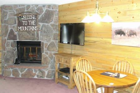Relaxing Rustic Mountain Condo - Appartamento