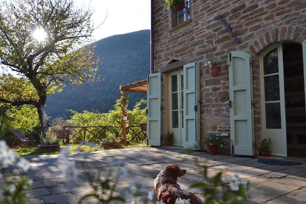 Il nostro casale da un'altro punto di vista... e la nostra cagnolina che si gode il fresco.