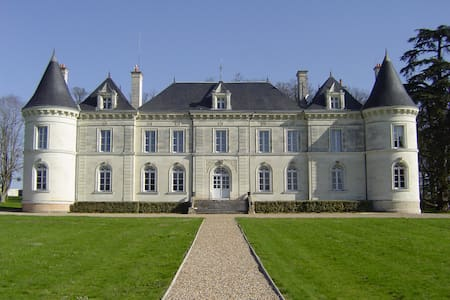 Loire Valley chateau with pool - Castillo