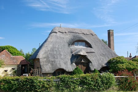 Beautiful thatched cottage in the country - Casa